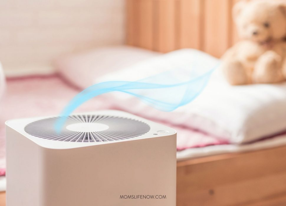 Why You Need An Air Purifier In Your Home